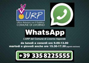 Da domani attivo il servizio WhatsApp del Comune