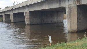 collesalvetti ponte sullo scolmatore (1)