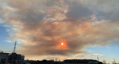 Piove cenere e luce da Tramonto in città, brucia il monte Serra (Foto) (3)