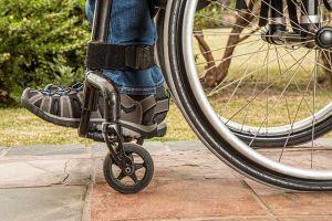 LivornoPress sedia rotelle disabile