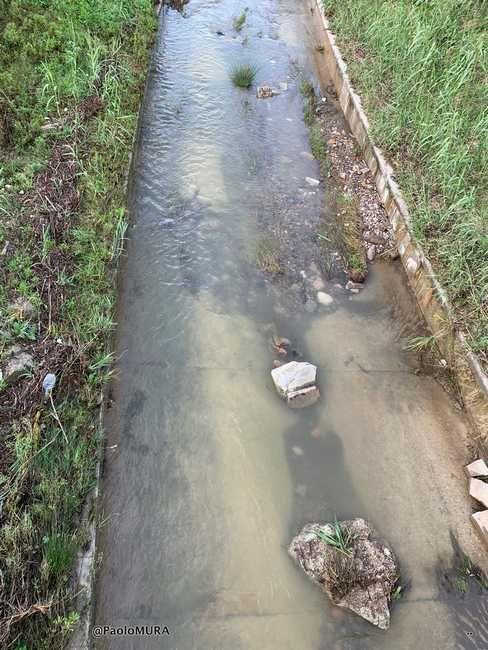 Rio Maggiore a Salviano, cemento e calcinacci nell'alveo