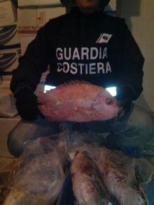 guardia costiera sequestro prodotti ittici