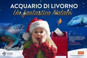 presepi sommersi acquario di Livorno