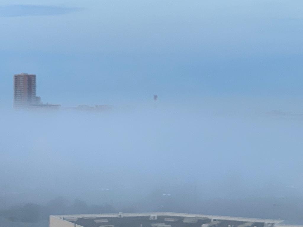 Livorno si risveglia nella nebbia