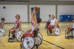 basket in carrozzina TDS