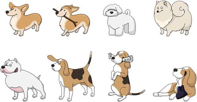 10-cose-che-un-cane-ama-fare