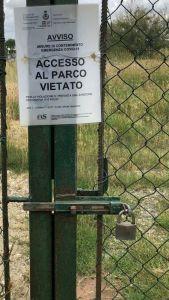 collesalvetti area sgambatura cani