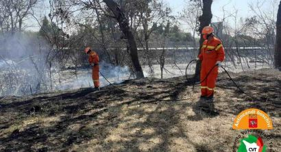 Rosignano, incendiato un ettaro di macchia mediterranea lungo l'Aurelia (4)