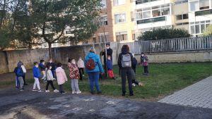 Il circolo scolastico B.Brin festeggia la giornata degli alberi