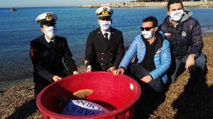 Tre Ponti la tartaruga marina Erica Cegia torna in mare