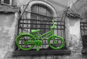 ecosistema urbano bici verde