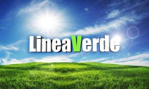 linea_verde_2013_logo
