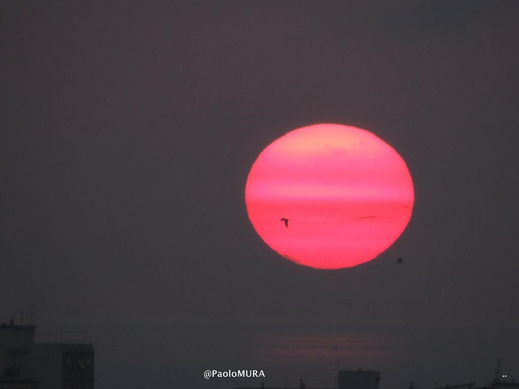 tramonto sole rosa