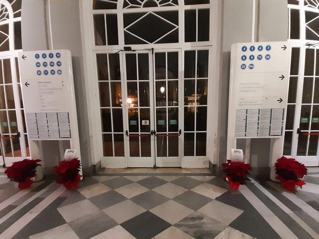 Ospedale, ecco le Stelle di Natale donate dall'Associazione Volontari Ospedalieri