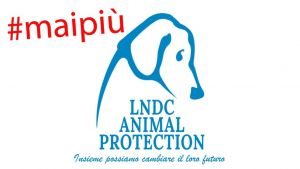lndc animal protection