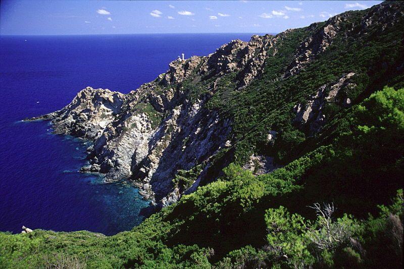 Gorgona, la costa, foto archivio PNAT