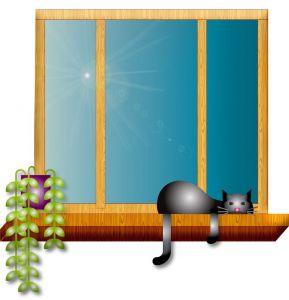 gatto_finestra_pixabay_foto_di_annalise_batista