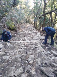 Elba lavori difformi nel Parco Nazionale, denunciate due persone Carabinieri Forestali