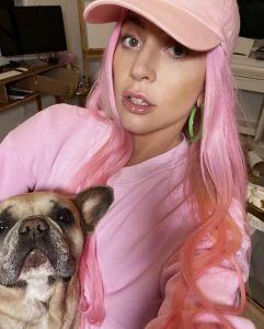 Rapiti i cani di Lady Gaga, ferito dog sitter.  Taglia di 500mila dollari