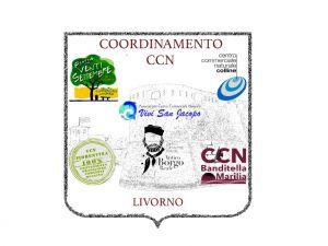 """CCN: """"Livorno vuole ripartire commercialmente e in sicurezza"""""""