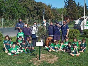 Livorno Rugby under 8, una partita e la piantumazione di un ulivo in ricordo di Alessandro Bernini
