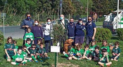 rugbylivornounder8-7
