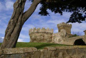 ADSI.Livorno_Castello di Populonia_albero