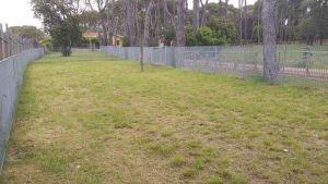 La nuova area sgambatura cani a villa Corridi