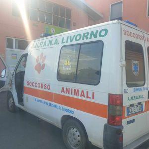 anpana mezzo soccorso animali