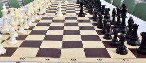 """Torna la scuola di scacchi """"Carlo Falciani"""" al Museo di Storia Naturale"""
