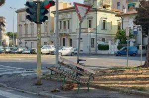 """Atti vandalici, Salvetti si infuria: """"Indegni di stare nella nostra città"""""""