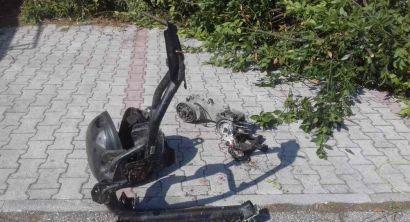 parcheggio libertà potatura siepi (1)