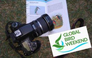 Weekend nella natura con Gaia, fotografia e Birdwatching junior all'oasi della Contessa
